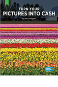 Turn Your Pictures into Cash - Online Edition